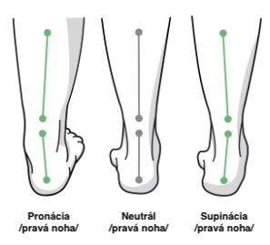 faee0fdd4d4f5 Pri výbere bežeckej obuvi je dôležité poznať vedenie chodidla/došľap. Toto  rozdelenie je však platné len na cestnú bežeckú obuv, keďže pri nespevnenom  ...